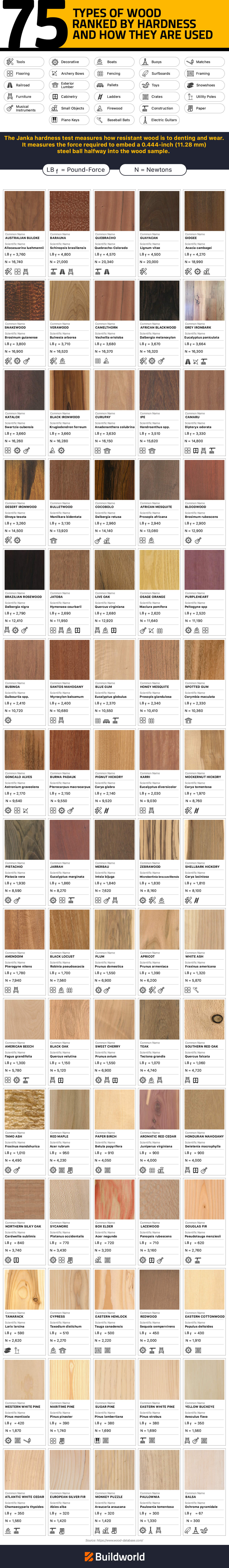 Types of Wood Hardness Infographics