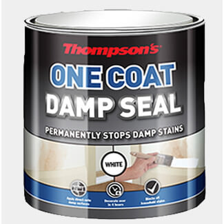 Thompsons One Coat Damp Seal 2.5L