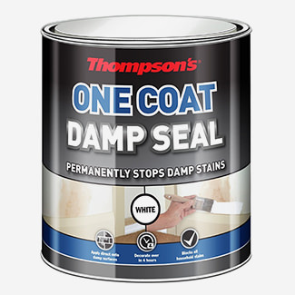 Thompsons One Coat Damp Seal 750ml